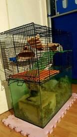 Gerbilarium cage plus 2 gerbils