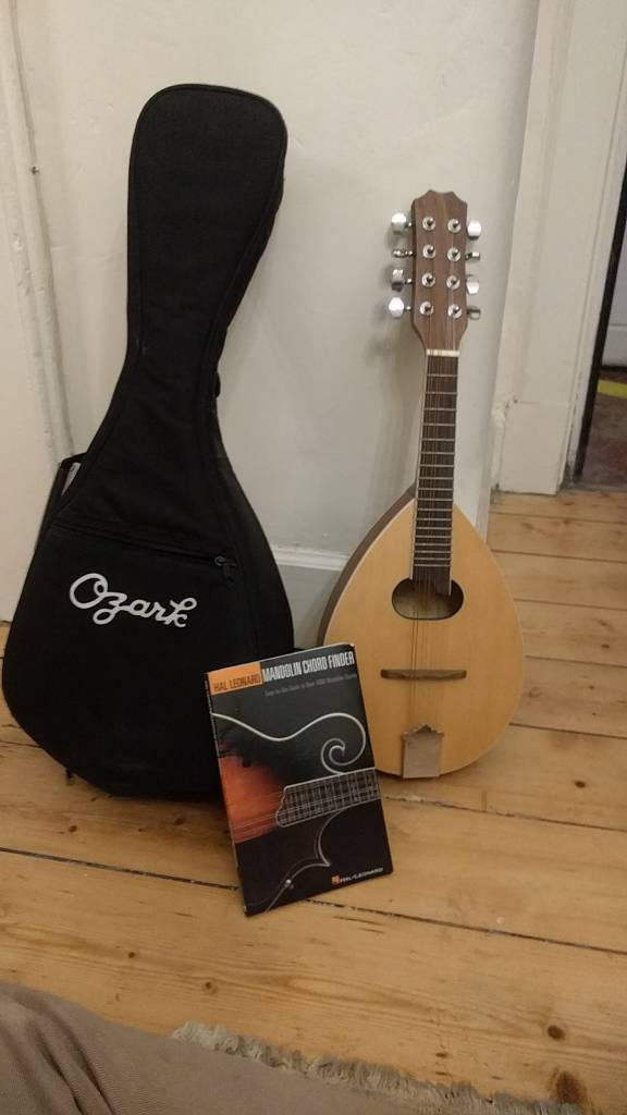 Mandolin Case And Chord Finder Like New In Falkirk Gumtree