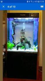 MARINE OR TROPICAL AQUARIUM WITH SUMP AND LED BUILT IN LED LIGHTS IN IMMACULATE CONDITION