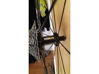 Mavic Aksium rear wheel (servced)