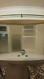 4x cream blinds for sale