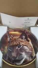 Royal Doulton Artful Lynx 22 carat framed plate
