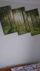 Forest picture. Three piece canvas
