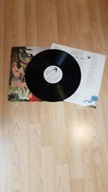 Big country - Vinyl /Record