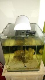 Dennerle fish tank