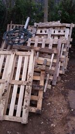 A selection of over 30 pallets