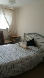 Beautiful Double room available for female professional