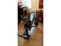 York folding weights bench with butterfly extension and weights