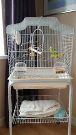 Budge cage stand and accessories