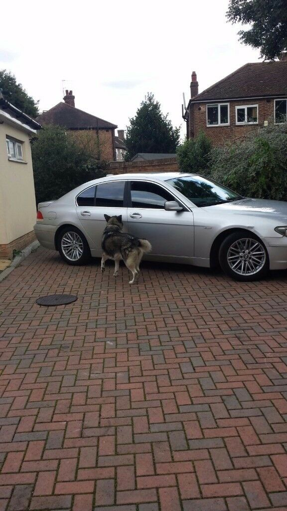 BMW 730I 2004 FOR SALE Very Good Condition