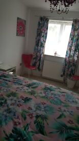 Large en suite room to rent in a house 1 person only