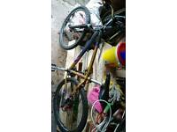 "Dawes acoma 16"" mountain bike"