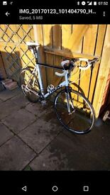Trek 64cm road bike. Large frame