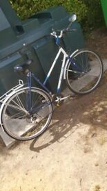 Ladies Rayleigh Bike