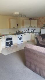 I have 2 bedroom flat near king power power stadium. Im looking for 3 bedroom house in any area.
