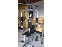 multi gym carl lewis reasonable condition