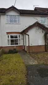 1 Bedrooms House to let in hatch warren Basingstoke , terrace, quite location