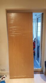Brand new door without fittings