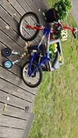Boys Raleigh Planet Play 14 bike