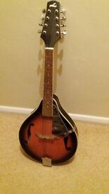For sale. A brand new mandolin.