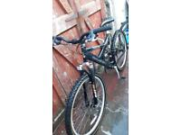 Lightweight duel suspension mountain bike. Can deliver