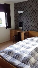 Double room available now for a professional person in Canford Heath Poole