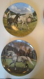 Spode Limited Edition ;The Noble Horse Collection; - mint condition