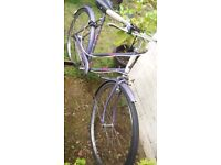 Ladies Caprice Raleigh bike