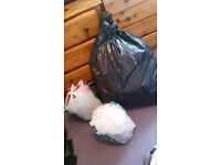 Bags full of womans clothes, sizes 8, 10 ,12