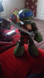 Big leornardo turtle