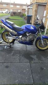 Honda hornet 600 for sale clean bike 11 month MOT