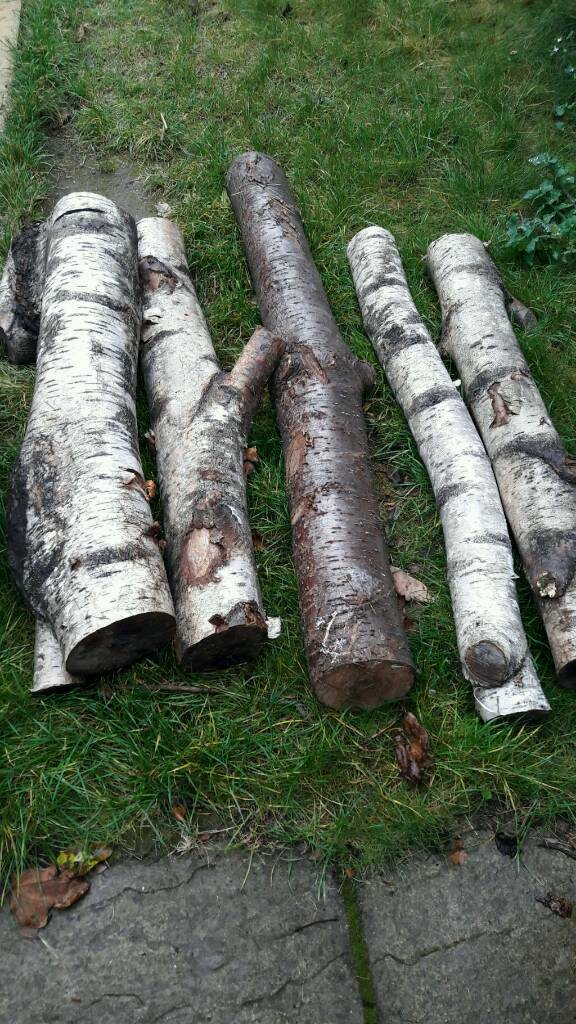 Logs ideal for log burner