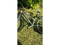 Free Scrap metal ladies bike
