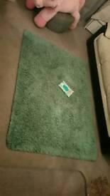 Massive living room quality green teal rug/carpet ( used )