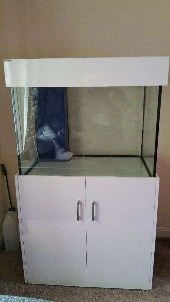 Cleal 3 Ft X 2 28 Inch High Gloss White Hood And Cabinet Includes Sump Return Pump