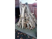 Free wood firewood for bonfire **still avail