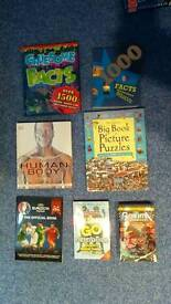 7 Facts, Puzzle Books