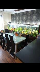 Dining table and 6x chairs