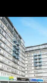 Woolwich Arsenal 1bed flat for rent