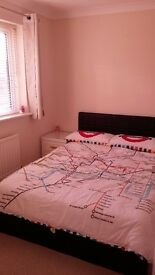 Double Room in Clean & Tidy House
