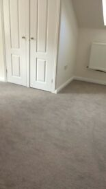 Large Grey Almost new Bedroom Carpet.