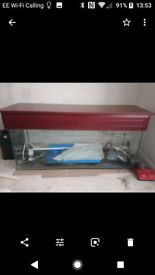4 Foot fish tank and accessories