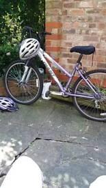 Giant Rock Bicycle