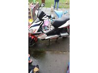 pulse force 50cc 63 plate