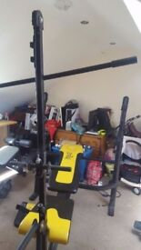 weight bench everlast with pulley and leg attachment