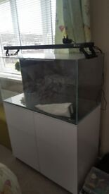Aqua one marine fish tank