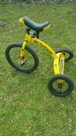 Unsual trike bike, large