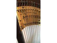 Pilgrim Harp