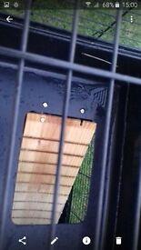 double rabbit cage