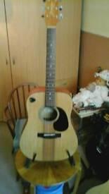 Takamine Jasmine Guitar